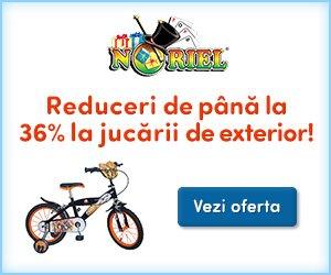 Reduceri jucarii de exterior copii Noriel