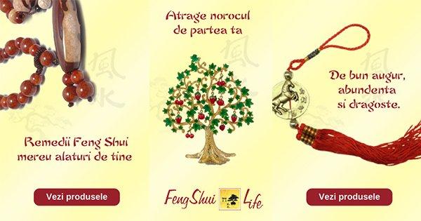 Feng Shui 4Life cashback - cumpara produse si cadouri feng shui si castiga bani online
