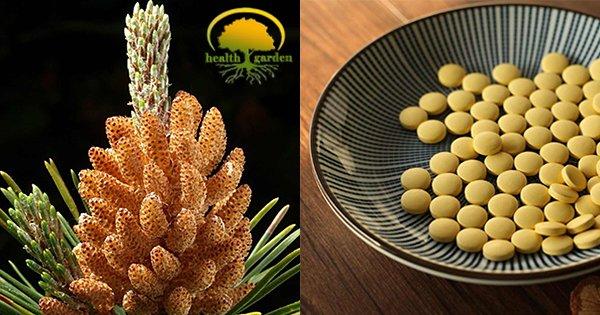 Follol cashback - cumpara polen de pin organic natural bio si castiga bani online