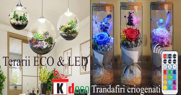 Kdeco cashback - cumpara cadouri si decoratiuni naturale personalizate si castiga bani online